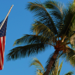 American flag - California VA mortgage