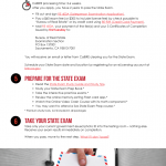 Infographic: Becoming A Sales Agent (separate exam and license apps)