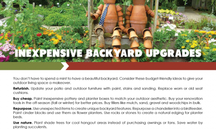 FARM: Inexpensive backyard upgrades