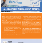 Annual credit reports