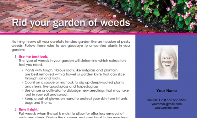 FARM: Rid your garden of weeds