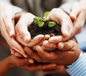 http://www.dreamstime.com/stock-image-hands-holding-green-plant-indicating-teamwork-image14978031