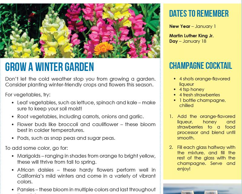 FARM: January Newsletter -D3