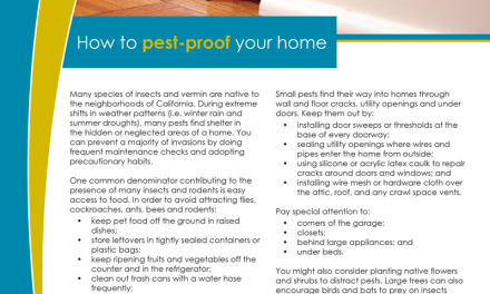 FARM: How to pest-proof your home