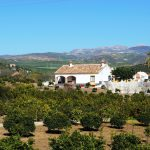 http://www.dreamstime.com/stock-images-farmhouse-orange-grove-andalusia-spain-image28966334