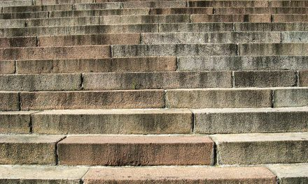 Do steps constitute a dangerous condition if the tenant fails to turn on a light and falls?
