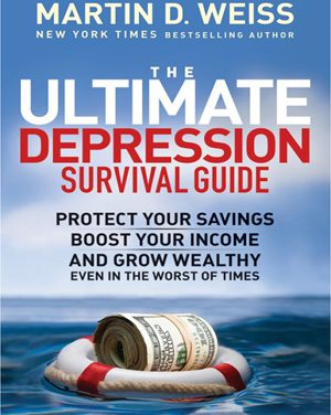 Book Review: The Ultimate Depression Survival Guide – Protect your savings, boost your income and grow wealthy in the worst of times