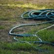dead lawn hose