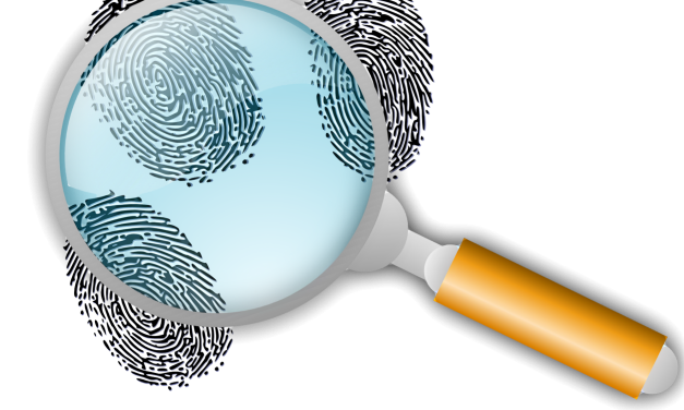 Criminal activity takes center stage in property data