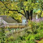 South Coast garden
