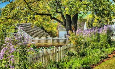 FARM: Grow a beautiful garden year-round! – South Coast