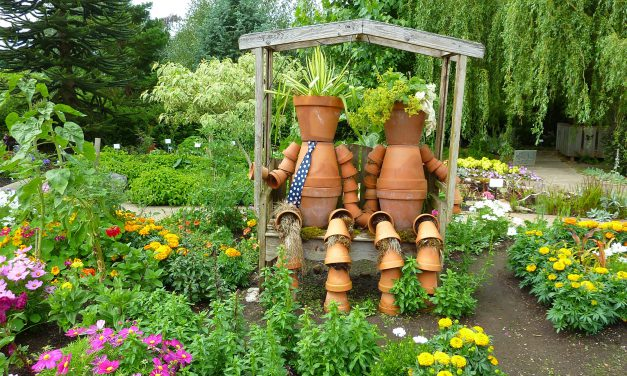 FARM: Grow a beautiful garden year-round! – Interior Valleys