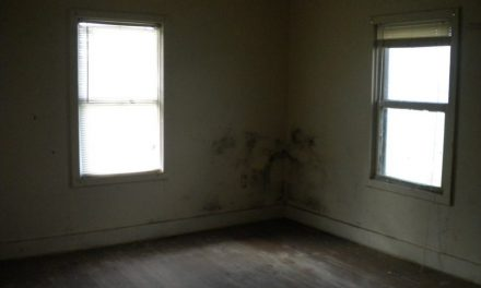 Mold — Landlord obligations