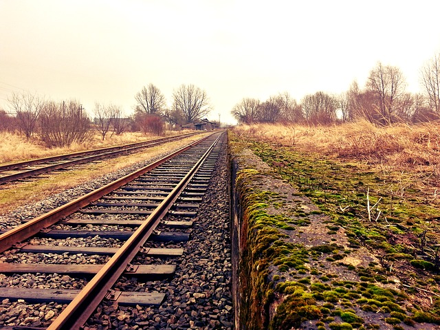 Does the government have a reversionary interest in a right-of-way it issued over a parcel of land for use by a railway company when the company abandons its use of the right-of-way?