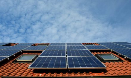 POLL: How do existing solar panels influence a buyer's decision to purchase a property?