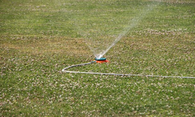HOA water usage guidelines for owners
