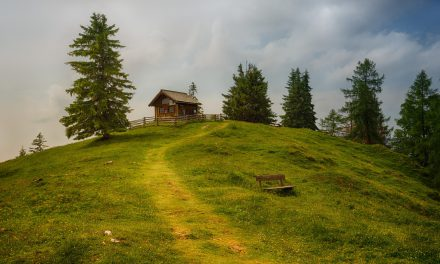 Mortgaged homebuyers prefer rural setting to city life