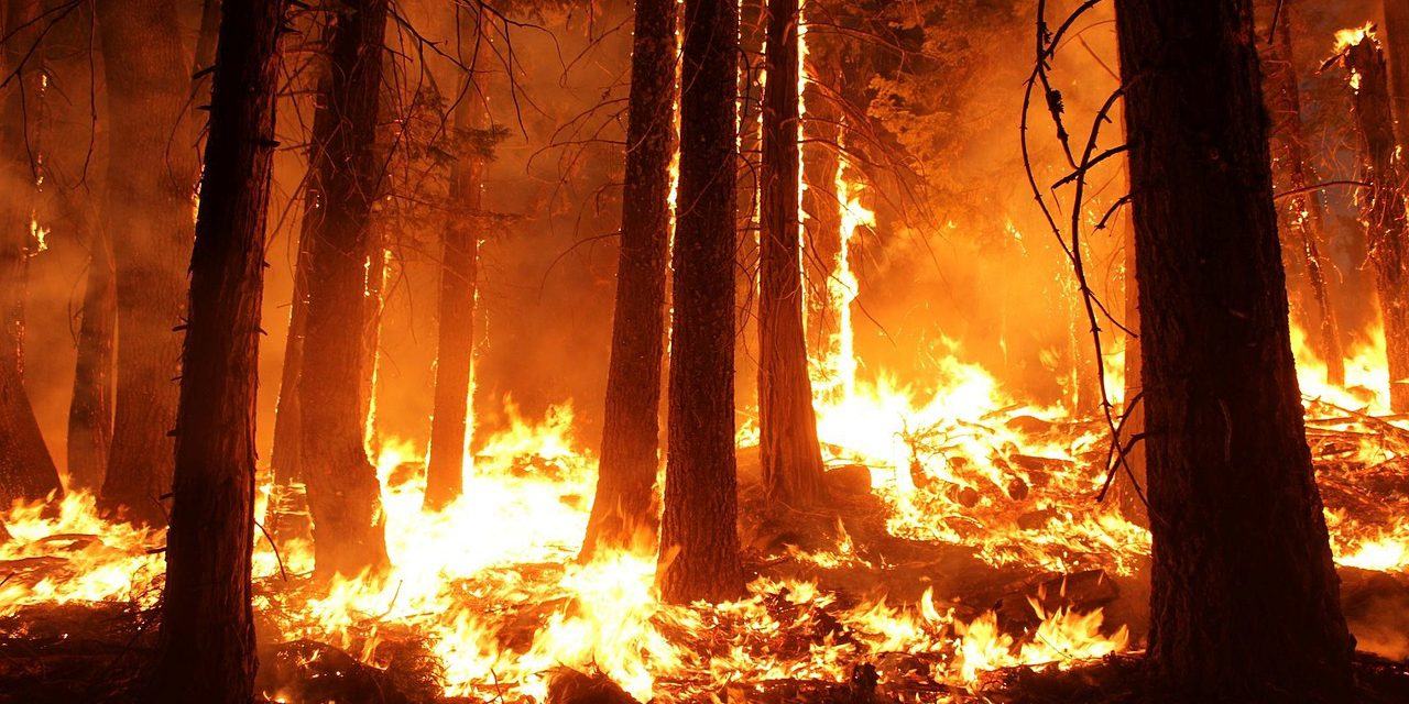As wildfire threats flare, so do home insurance premiums